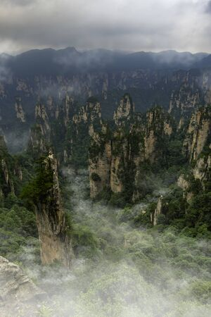 Fog around Vertical mountains in column forms and full of vegetation in Yellow Stone Stronghold (Huangshi Zhai) in Yuanjiajie Scenic Area, Zhangjiajie National Park, China