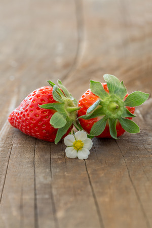 fragaria: Two Strawberries with a strawberry (Fragaria) blossom on a rustic wooden background Stock Photo