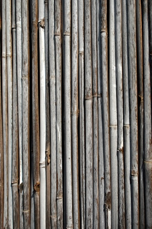Bamboo arranged in a vertical photo