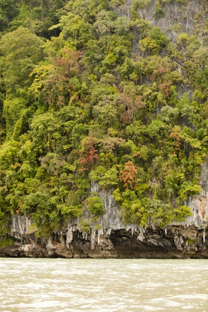 The forest islands in Krabi, Thailand