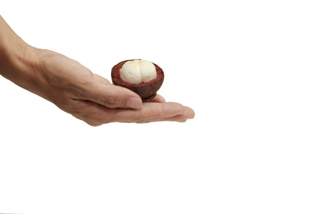 mangosteen on hand white background   photo