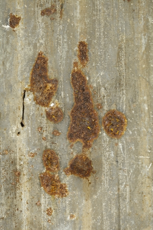A rusty corrugated iron metal textu photo