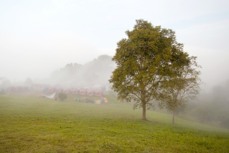 Lonely tree on the ground with morning mist have camp   photo