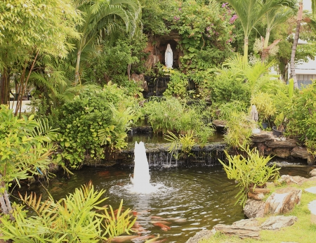 Small garden pond with a waterfall, bushes  Stock Photo