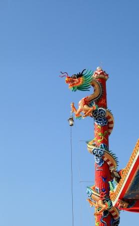 dragon roll on pole high blue background