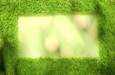 Square of green grass field green background Stock Photo