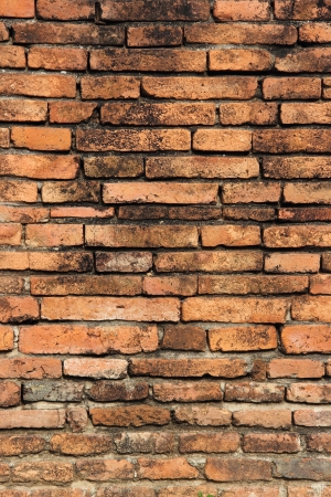 Brick Wall Texture Brick wall with some bricks lighter colored  Texture and background vertical Stock Photo - 20130284