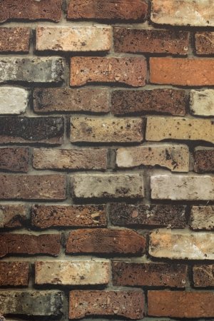 Brick Wall Texture Brick wall with some bricks lighter colored  Texture and background Vertical Stock Photo - 20858446