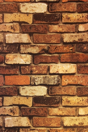 Brick Wall Texture Brick wall with some bricks lighter colored  Texture and background vertical Stock Photo - 20858552