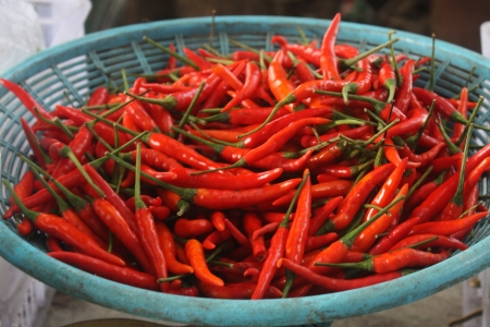 Red chili in the basket  photo