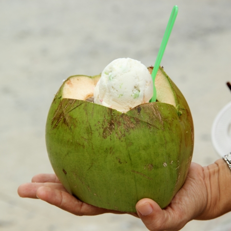 Coconut ice cream in coconut photo