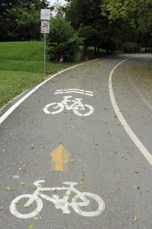 Bicycle lane in the park photo