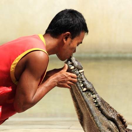 THAILAND, SAMUTPRAKAN -OCT 21, 2013  Traditional for Thailand  Show of crocodiles  The trainer kiss the mouse of a crocodile on October 21, 2013 in Crocodile Farm SAMTPRAKAN, Thailand  Stock Photo - 23157504