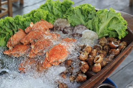 fresh Seafood on ice at the restaurant  photo