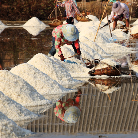 The Farmer working in the salt field  photo