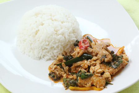 Chicken panang curry with rice on the plate  photo
