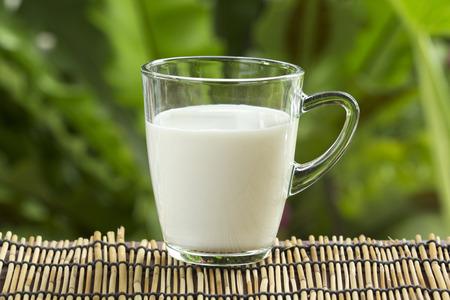 Glass of fresh milk on the garden background