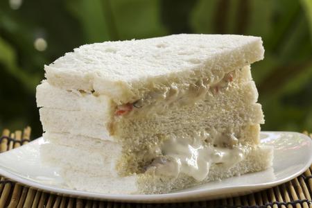 A fresh tuna sandwich on the plate photo