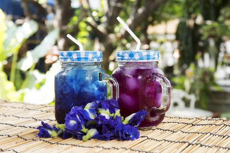 pea shrub: Asian pigeonwings Butterfly Pea juice  refresh Thai herb cold drink Stock Photo