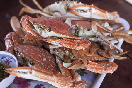dungeness: Steam Dungeness crab , ready to eat! Stock Photo