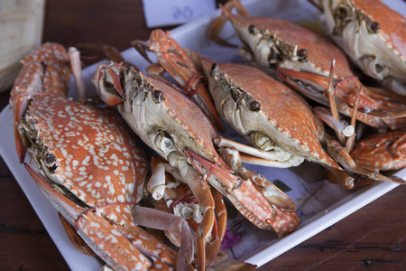 Steam Dungeness crab , ready to eat! Stock Photo