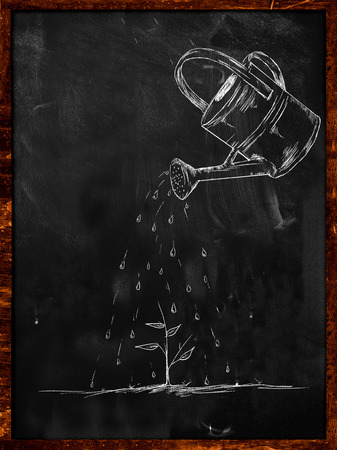 Watering Small Plant sketch on blackboard photo