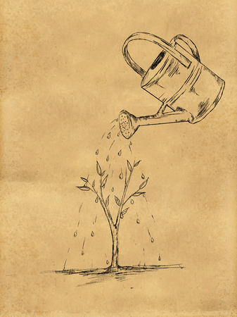 a bough: Watering Plant sketch on Paper