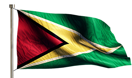 guyanese: Guyana National Flag Isolated 3D White Background