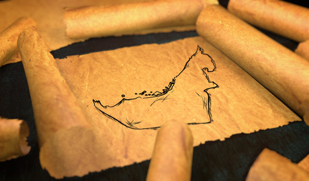 unfolding: United Arab Emirates Map Drawing Unfolding Old Paper Scroll 3D Stock Photo