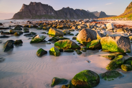 evening on the Lofoten islands Stock Photo