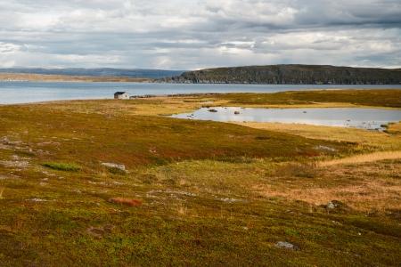 landsape in northern norway photo