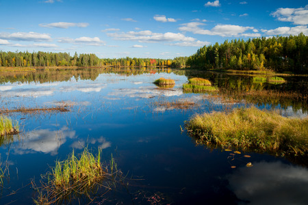핀란드의 인도 여름