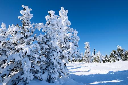 beautifull: beautifull winter landscape Stock Photo