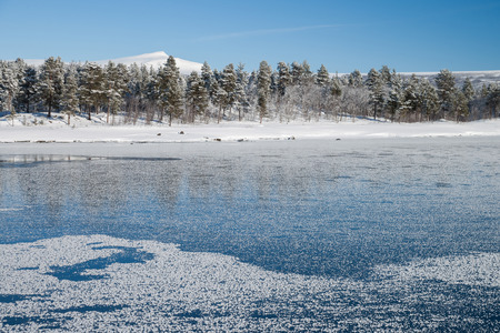 cold season: a beautiful cold winter day in sweden