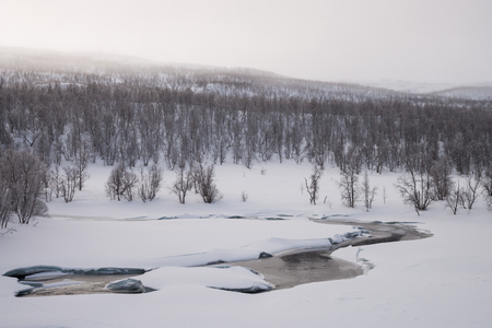 frozen river: fog over a frozen river in sweden