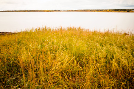 finland: autumn colours in finland