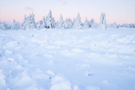erzgebirge: white winter landscape in the morning Stock Photo