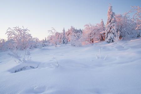 winter sunrise: sunrise over a beautiful winter landscape in winter