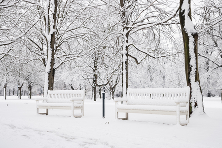 winter park: a white bench in a park in winter
