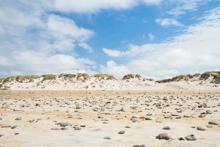 dune: dune landscape in denmark