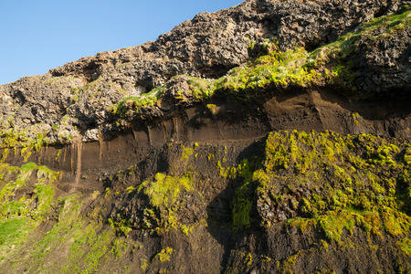 formation: moss formation in iceland