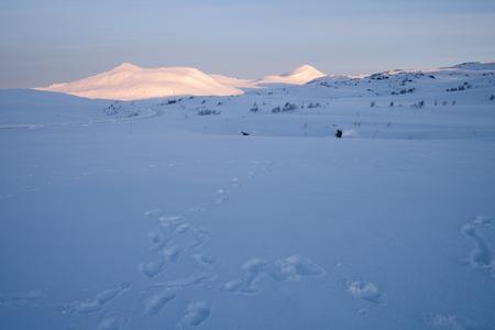 sweden winter: winter landscape in sweden during the sunrise Stock Photo