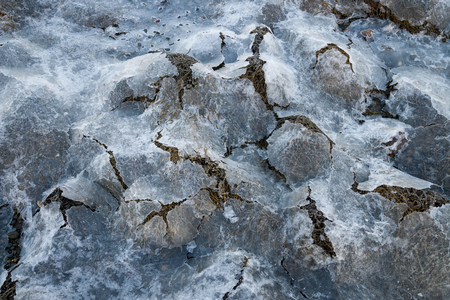 wrack: brown algae covered with ice in norway Stock Photo