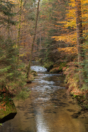 czech switzerland: Little river Kirnitzsch in autumn in saxony switzerland Archivio Fotografico