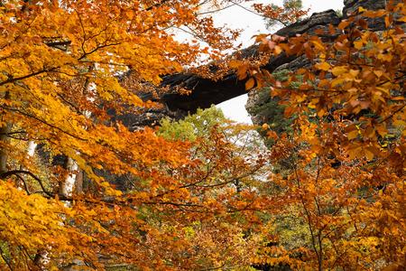 czech switzerland: Ponticello d'arenaria Prebischtor nella Svizzera beoemiana