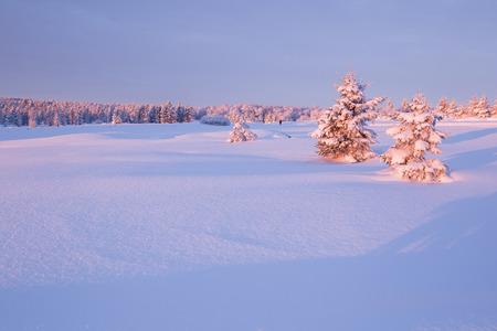 erzgebirge: Sunrise over a cold winter landscape Stock Photo