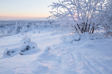 Sunrise over a snowy winter landscape in Germany