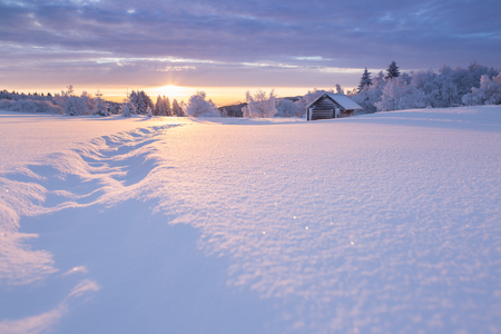 Golden sunlight over an idyllic white winter landscape with a little wooden hut in background