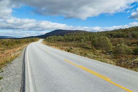 Straight road through the Dovrefjell nationalpark in Norway
