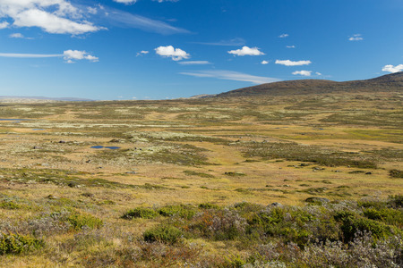 Mountain landscape in the Dovrefjell nationalpark in Norway